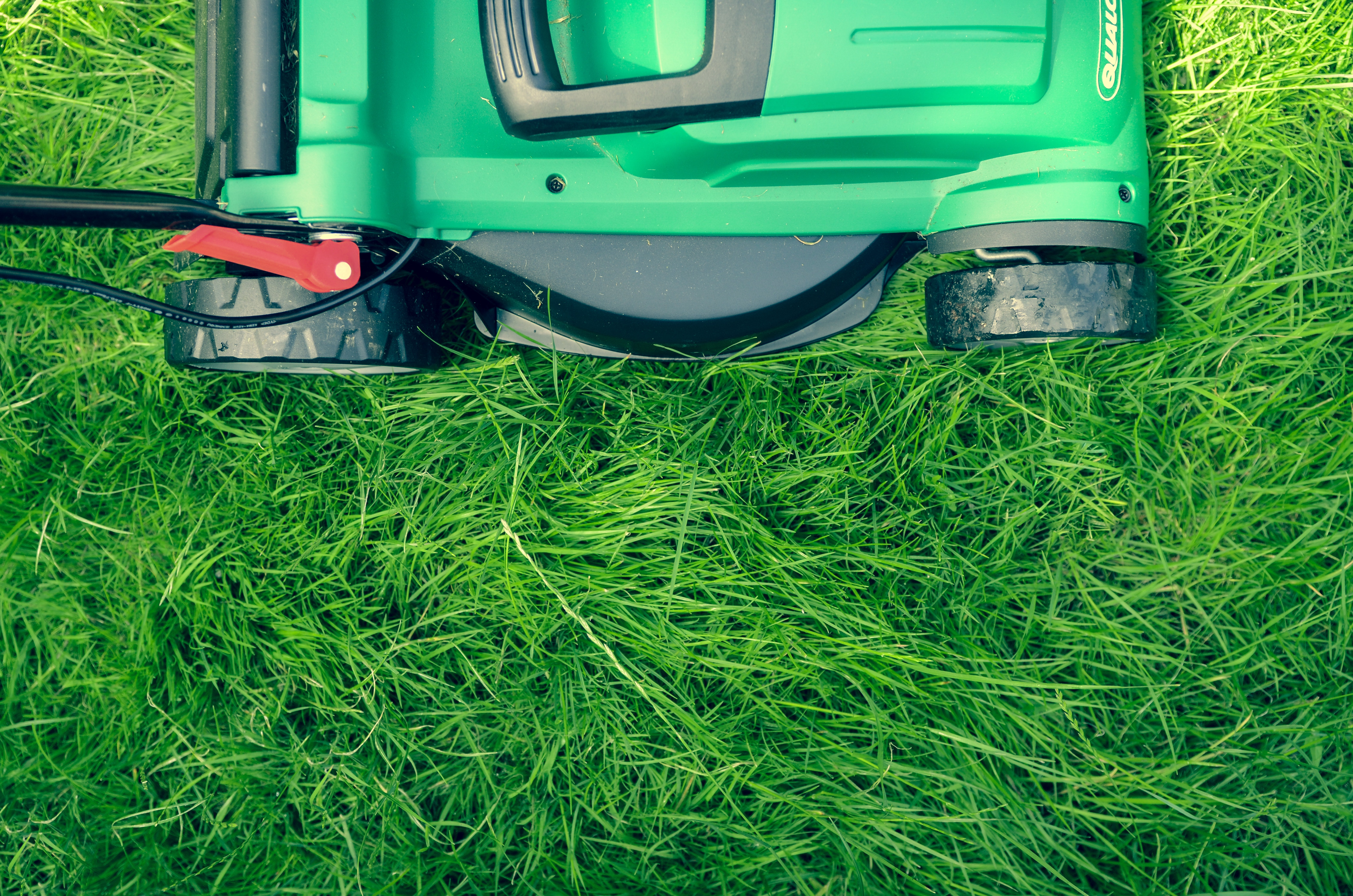 Lawn Care / Maintenance
